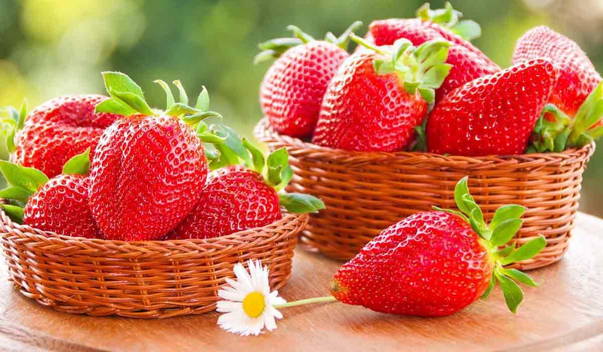 صورة فوائد فاكهة الفراولة