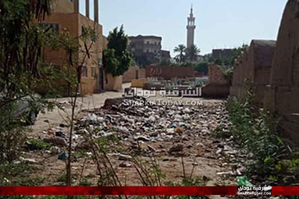صورة منشية أبوحماد تصرخ من القمامة والحيوانات الضالة