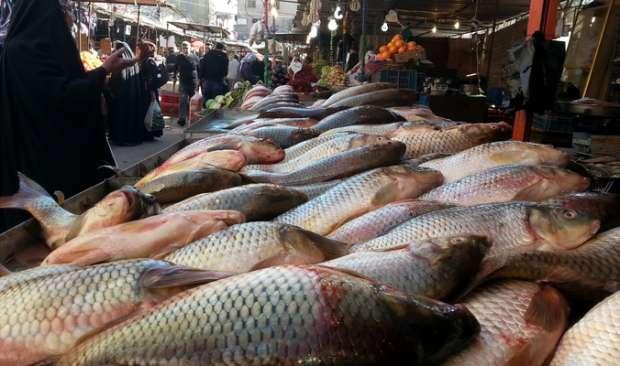 صورة أسعار الأسماك اليوم الخميس 7 مايو 2020