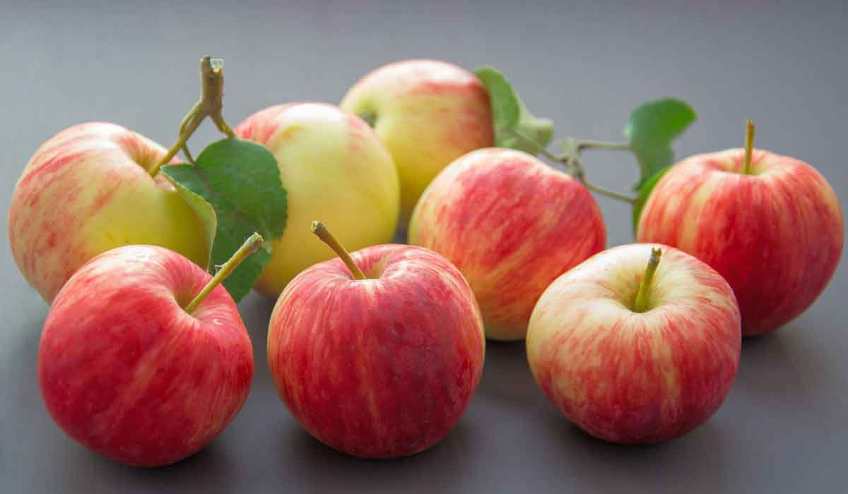 عدد السعرات الحرارية في التفاح