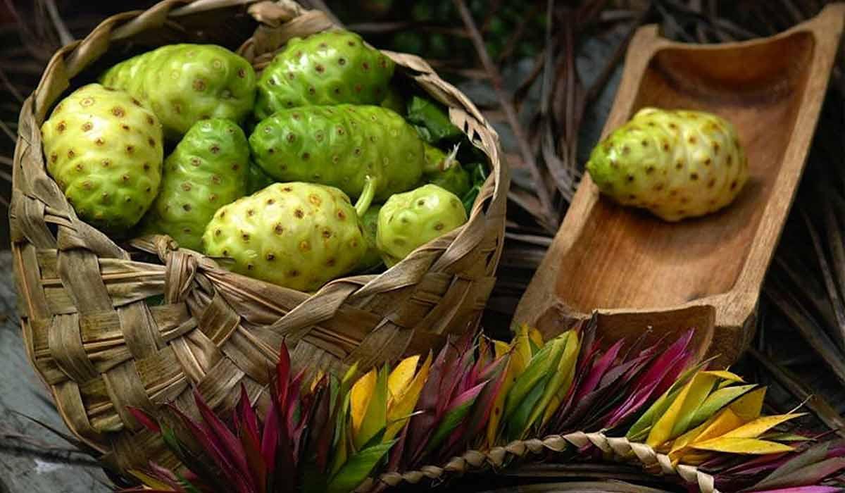 فاكهة القشطة وكيف تؤكل