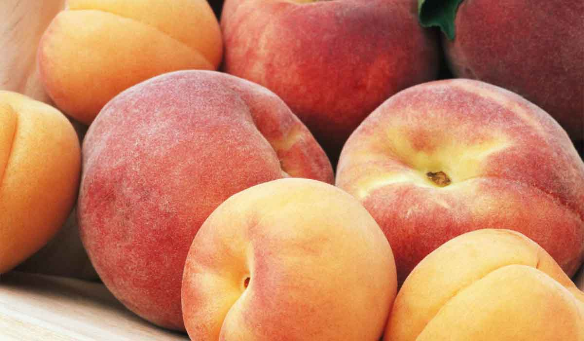 فوائد فاكهة الخوخ