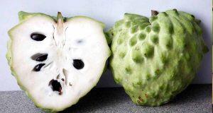 ما فائدة فاكهة القشطة