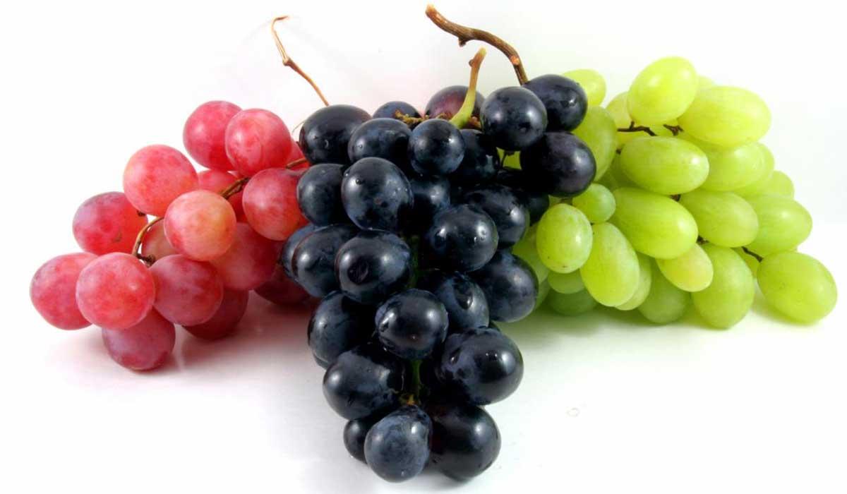 ما هي فوائد عصير العنب