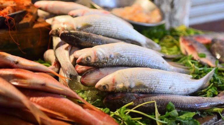 صورة أسعار الأسماك بسوق العبور اليوم الاثنين 11 مايو 2020