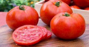 أسعار الطماطم