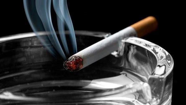 صورة حقيقة ارتفاع أسعار السجائر