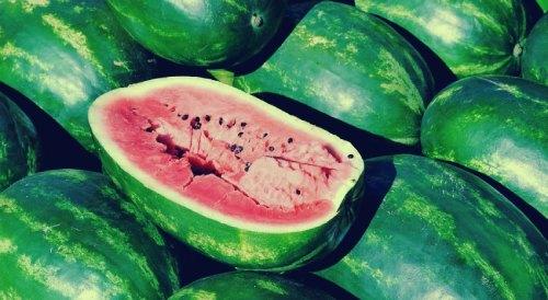 صورة 6 نصائح لكشف البطيخ الناضج