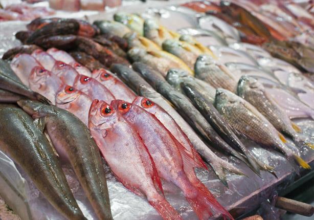 صورة أسعار الأسماك اليوم الاثنين 29 يونيو 2020