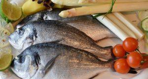 أسعار السمك اليوم الجمعة 10-7-2020 في مصر