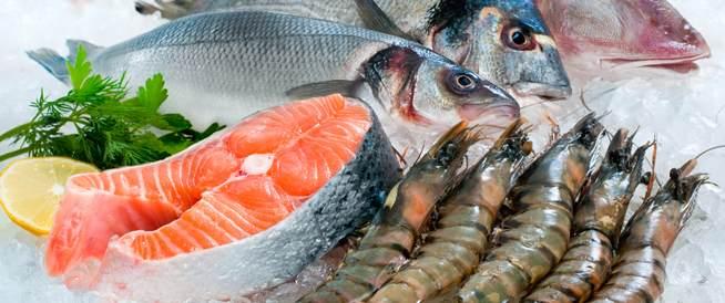 أسعار السمك اليوم السبت 18-7-2020 في مصر