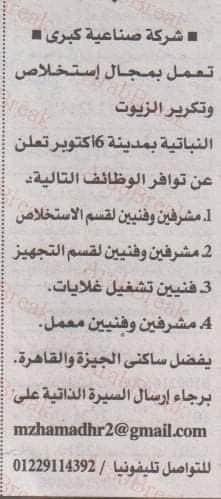 الأهرام بالقاهرة والشرقية 4