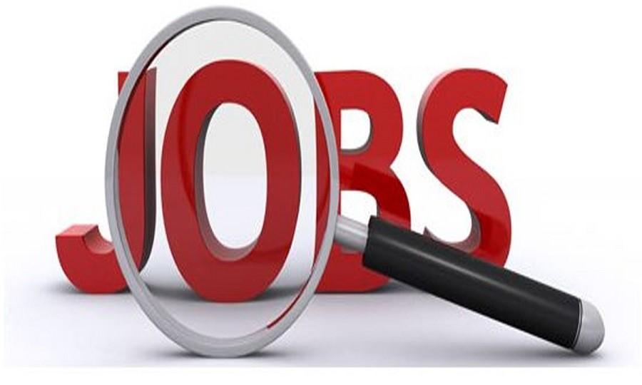 وظائف شاغرة لجميع المؤهلات وبدون من وزارة الشباب برواتب تصل لـ 8000 جنيه