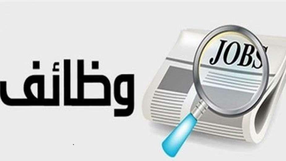 صورة وظائف الحكومة المصرية لشهر يوليو 2020