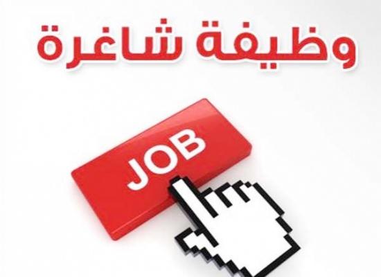 صورة القوى العاملة توفر 2700 فرصة عمل براتب يبدأ من 2500 جنيه