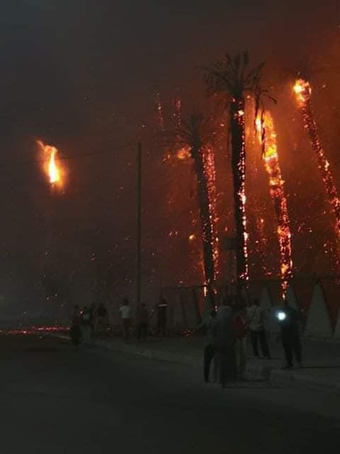 .. حريق هائل أمام حديقة الفسطاط بمصر القديمة