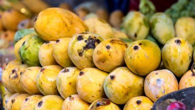 صورة أسعار المانجو اليوم الاثنين 14-9-2020 في سوق العبور