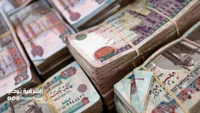 صورة أعلى عائد على شهادات الادخار في مصر بعد إلغاء شهادة الـ15%
