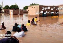 صورة فيضان النيل: تحذيرت من غرق بعض المناطق في 13 محافظة