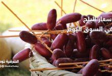 صورة أسعار البلح في السوق اليوم بلح زغلول يبدأ من 2 جنيه