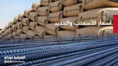 صورة أسعار الأسمنت والحديد في مصر اليوم السبت