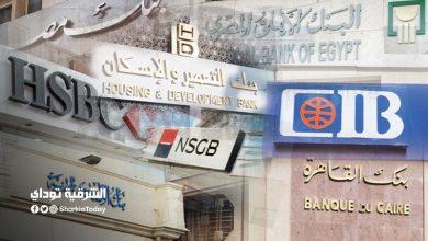 """صورة أعلى فائدة على شهادات الادخار في مصر """"إليك التفاصيل"""""""
