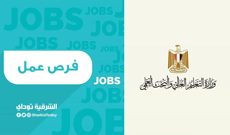 وظائف وزارة التعليم العالي