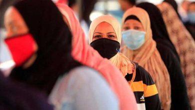 إصابات كورونا في مصر
