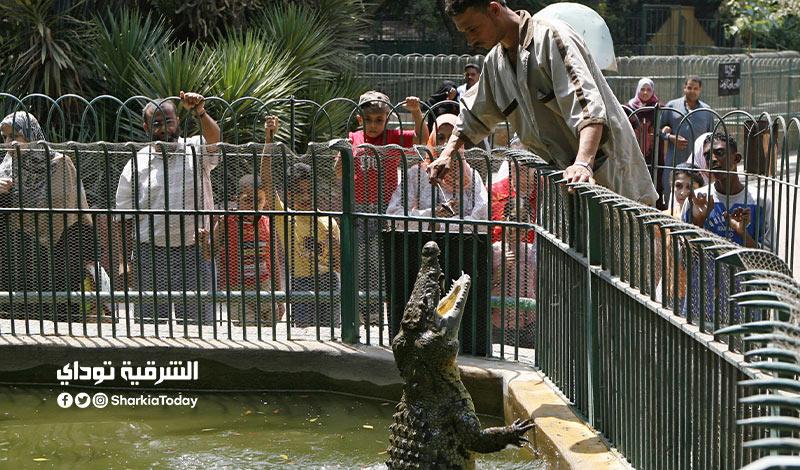 سعر تذكرة حديقة الحيوان