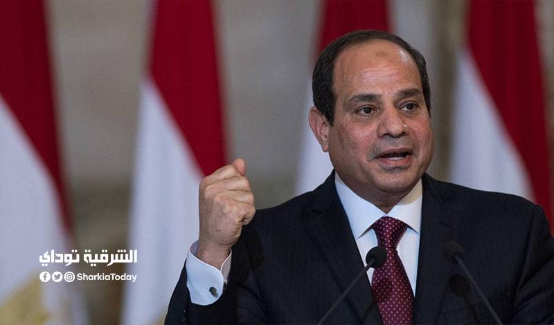 الموافقة على انضمام مصر للاتفاقية الجمركية