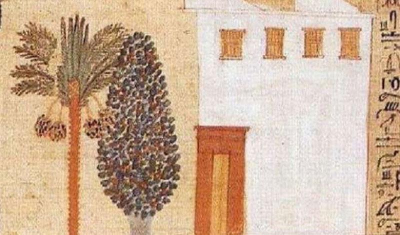 باحث أثري يكشف سرًا حير السوشيال ميديا.. ليه مفيش صور للفراعنة بملابس شتوية؟