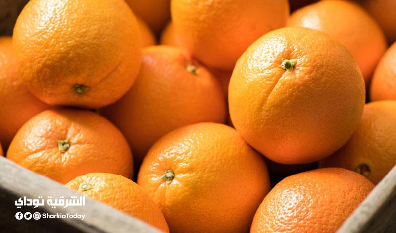 تهربًا من رسوم الوزن.. 4 مسافرين يتناولون 30 كيلو برتقال قبل انطلاق رحلتهم