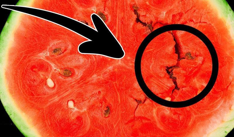 الفرق بين البطيخ السليم والمهرمن