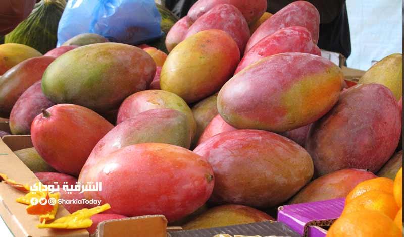 أسعار المانجو اليوم في مصر