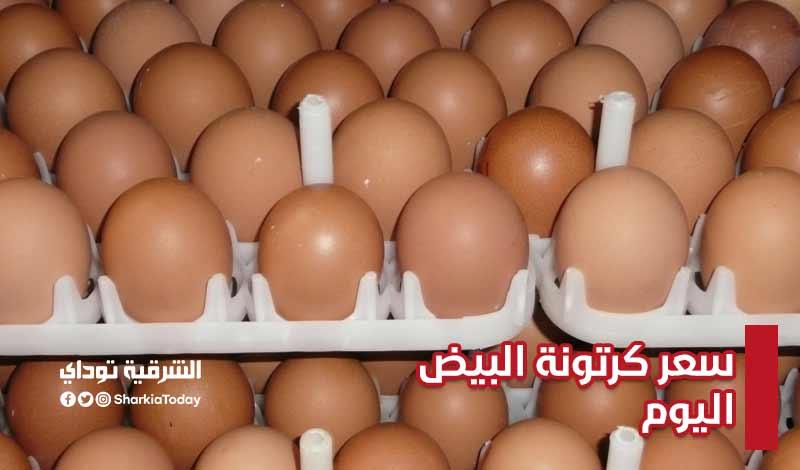 سعر كرتونة البيض اليوم