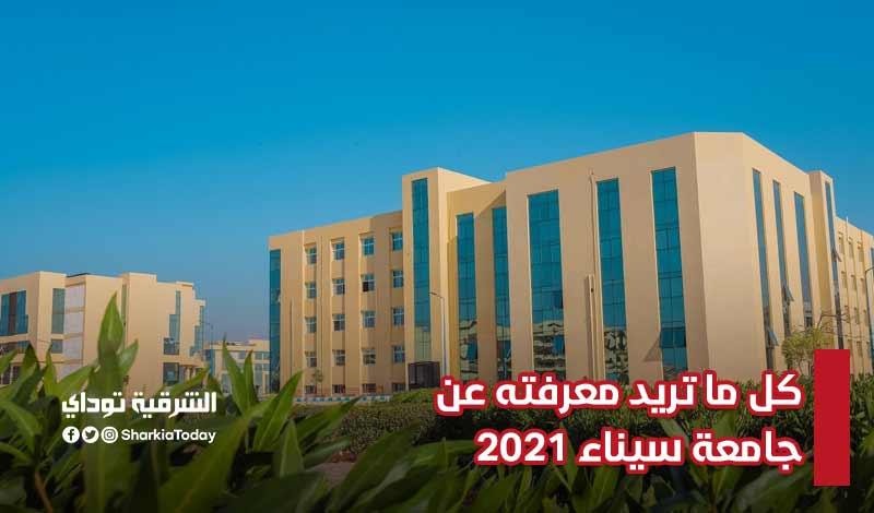 مصاريف جامعة سيناء 2021-2022